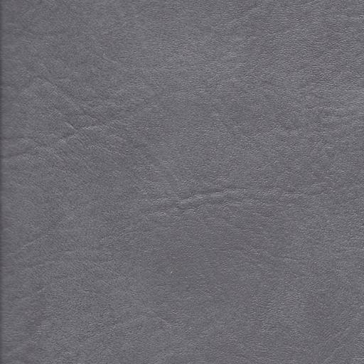 Coastal Gray/Ash